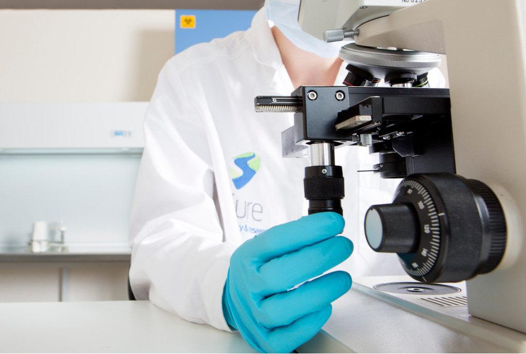 Endotoxine testen